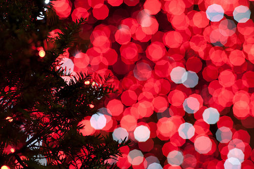 Christmas! Tumblr_lrzyk67zir1qdpbcko1_500