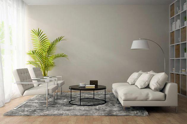 Egzotika u domu: sobna palma 16353_big