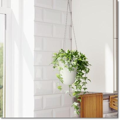 Vrtlarenje unutar četiri zida SKURAR