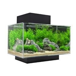mise en place d'un 20 l  La_aquarium-fluval-edge-petit-modele-23-litres-21752
