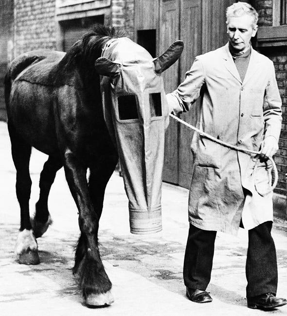 ABHO Horse-gas-mask