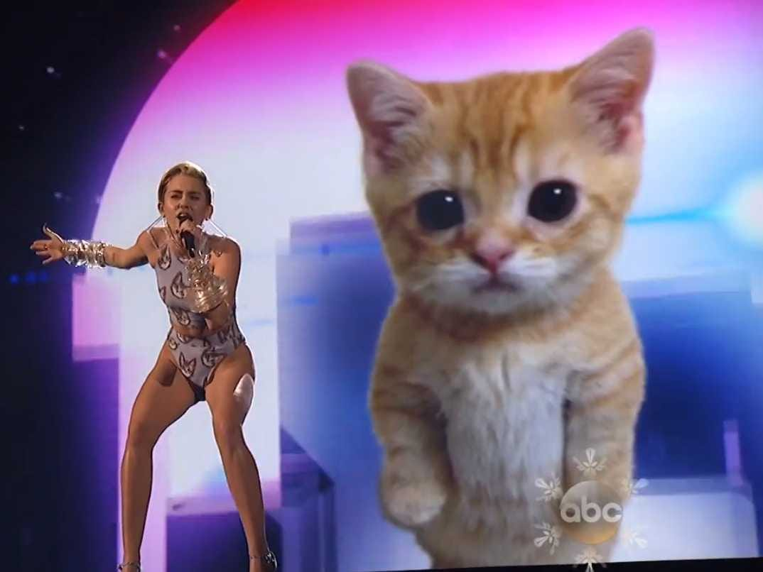 Los Gatos son GPS´s alien, regalo anunnaki a los egipcios Miley-cyrus-performed-in-front-of-a-crying-cat-at-the-amas
