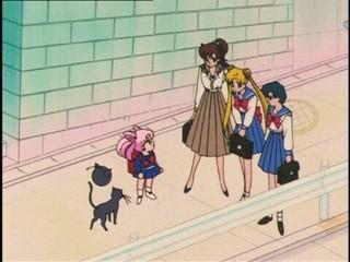 Sailor Moon [TV3] [ONLINE] [DD] [MP4] - Página 3 1474153921100