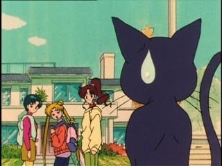 Sailor Moon [TV3] [ONLINE] [DD] [MP4] - Página 3 1464559622742