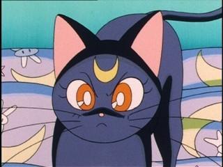 Sailor Moon [TV3] [ONLINE] [DD] [MP4] - Página 3 1463197715873