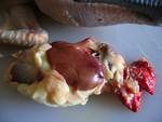 préparation + cuisson du lapin et du poulet (et autres) T-poulet_11