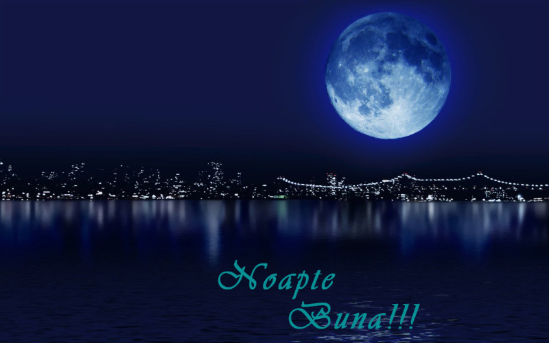 Good night! Sms-de-nopate-buna-e1435169521676