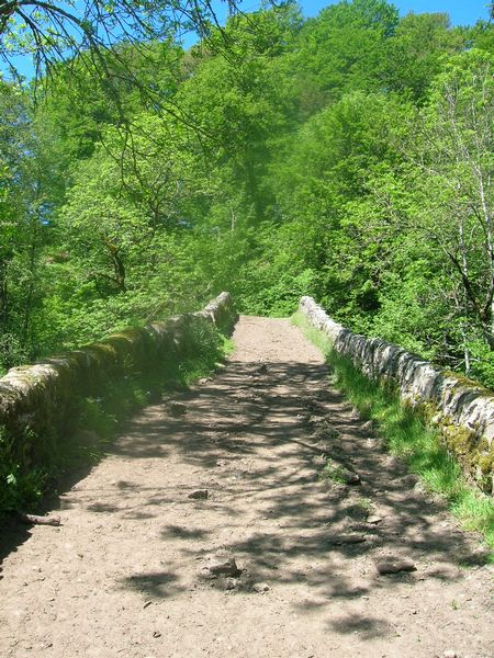 Tour du Cantal 2009 Pont-romain2