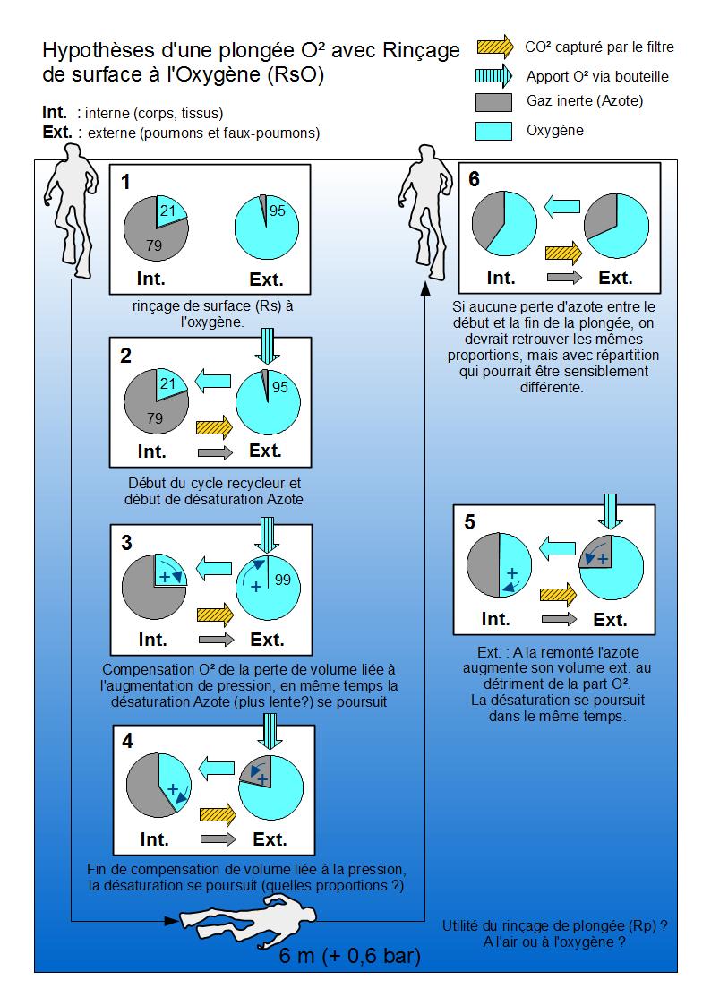 Désaturation et rinçage(s) d'une plongée pure O² (< 6 mètres) Hypothese_scenario_RsO