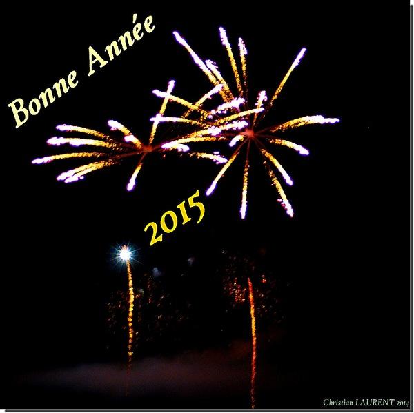 Bonne fin d'année  2015r