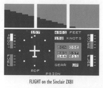 Como você começou no mundo dos simuladores Flight
