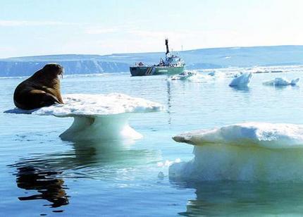 Les Saisons - Page 7 Arctic-melting