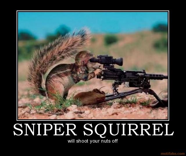 Inspirational Pics Sniper-squirrel-sniper-squirrel-demotivational-poster-1222872232