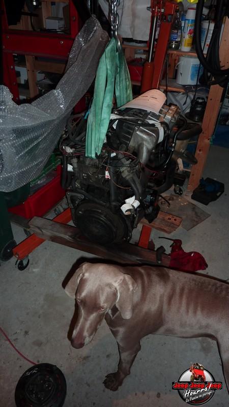 Entretien préventif moteur J8S 800  (CJ7 2.1L Diesel ATMO) P1080525