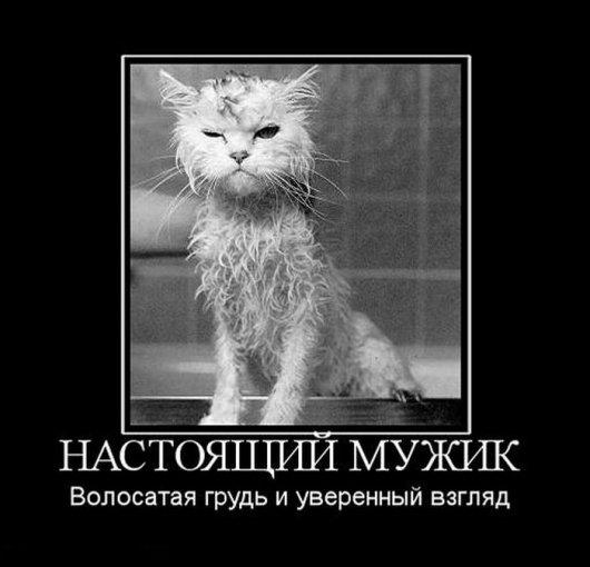 подборка от стасевича - Страница 2 Stimka.ru_1307609500_demotivv