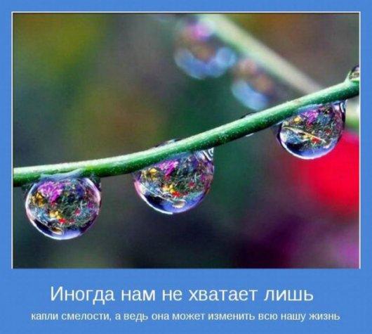 подборка от стасевича - Страница 2 Stimka.ru_1323178958_motinatory_08