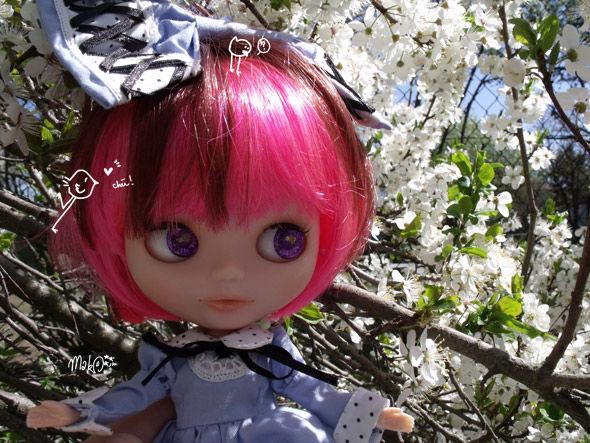 Gossip [Blybe/Bassak aka Blythe lovely Clone] 51754087