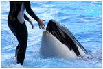 [WDW + Tourisme] Du 25 septembre au 11 octobre 2009 + WDW 2011 page 6 - Page 2 49606925_p