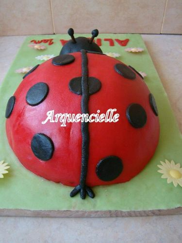 coccinelle - Page 3 43051247_m