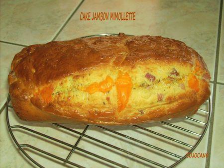 cake jambon mimolette 25541971_p