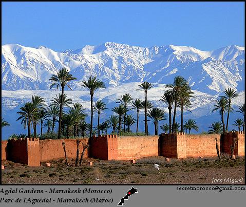 المدن المغربية المحتضنة لكاس العالم للاندية 11687312