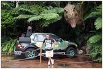 [WDW + Tourisme] Du 25 septembre au 11 octobre 2009 + WDW 2011 page 6 - Page 2 49650210_p