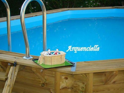 piscine 42420393_m