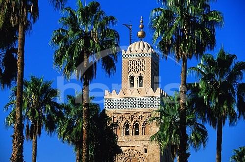 المدن المغربية المحتضنة لكاس العالم للاندية 9884406