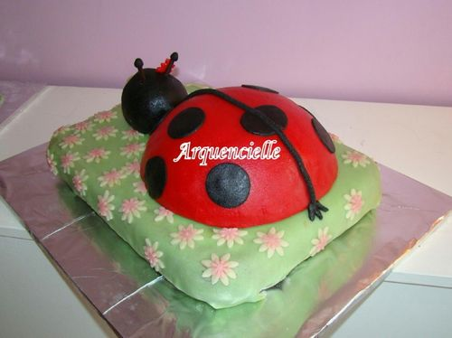 coccinelle - Page 3 44753273_m