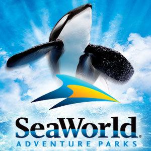 [WDW + Tourisme] Du 25 septembre au 11 octobre 2009 + WDW 2011 page 6 - Page 2 49605768