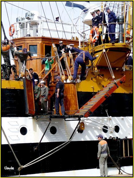 L'Amerigo Vespucci au Havre 55648827