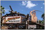 [WDW + Tourisme] Du 25 septembre au 11 octobre 2009 + WDW 2011 page 6 - Page 2 49230117_p