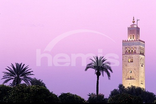 المدن المغربية المحتضنة لكاس العالم للاندية 9884352