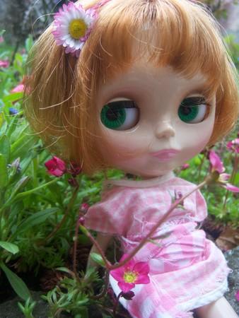 [Avril 2008] Des Blythes et des Fleurs 24653977_p