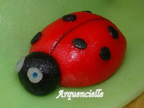 coccinelle - Page 3 43051525_m
