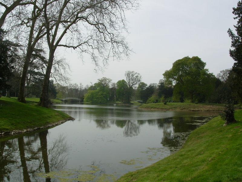 Les jardins anglais 55318305