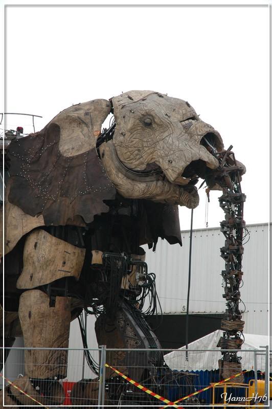 Royal de Luxe au Havre, du 26 au 29 Octobre 2006 7585153