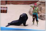 [WDW + Tourisme] Du 25 septembre au 11 octobre 2009 + WDW 2011 page 6 - Page 2 49606794_p