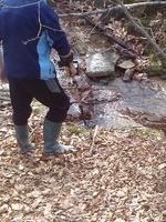 Самородно злато с металдетектор по централна Средна гора-експедиция. 113d4cf1ab029420