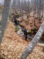 Самородно злато с металдетектор по централна Средна гора-експедиция. E2431dda7e25f55d