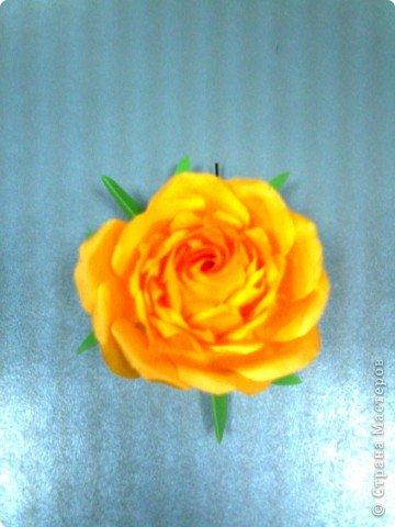 роза из бумаги Foto0625