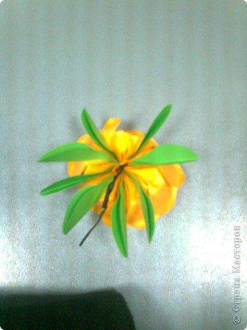 роза из бумаги Foto0626_2