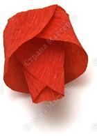 Миллион роз из гофрированной бумаги PICT3444