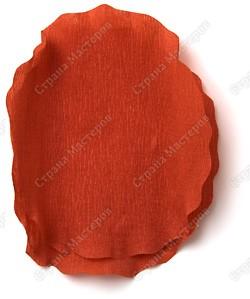 Миллион роз из гофрированной бумаги PICT3453