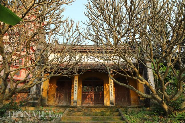 Bí ẩn ngôi chùa không có hòm công đức và nhục thân Thiền sư 300 năm không phân hủy ở Bắc Ninh (+video) Anh-10-1552839633-width650height433