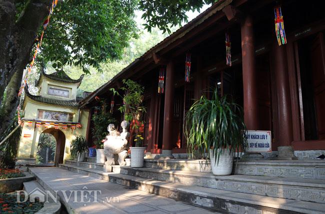 Bí ẩn ngôi chùa không có hòm công đức và nhục thân Thiền sư 300 năm không phân hủy ở Bắc Ninh (+video) Anh-4-1552839633-width650height427