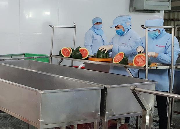 Sau bánh mì đến bún dưa hấu siêu lạ vừa ra lò đã xuất sang Hàn Quốc Xuat-hien-bun-dua-hau-sieu-la-vua-ra-lo-da-xuat-khau-sang-Han-Quoc-b2-1582618184-width620height446