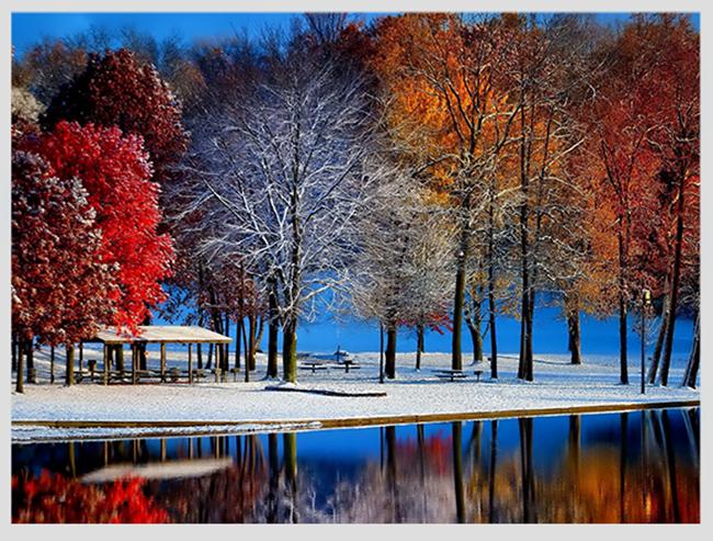 """Mê mẩn ngắm những mùa cây thay lá """"long lanh"""" nhất thế giới 14-1539422949-width650height493"""