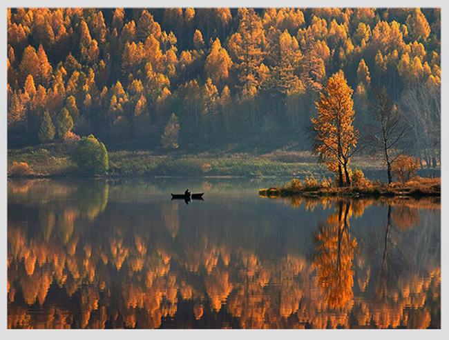 """Mê mẩn ngắm những mùa cây thay lá """"long lanh"""" nhất thế giới 16-1539422949-width650height493"""