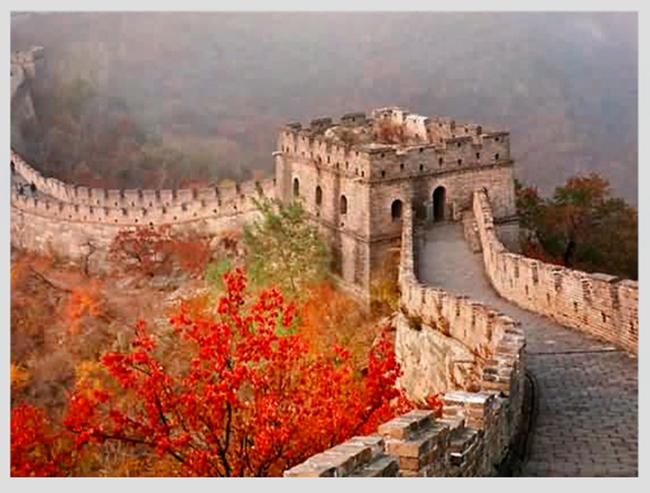 """Mê mẩn ngắm những mùa cây thay lá """"long lanh"""" nhất thế giới 4-1539422949-width650height493"""